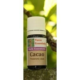 Extrait concentré Cacao