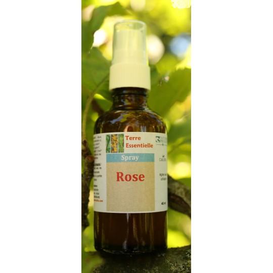 Spray d'huiles essentielles Rose