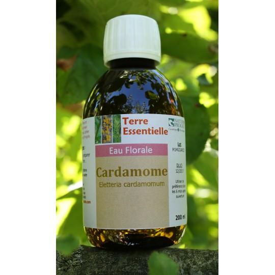 Hydrolat Cardamome