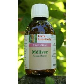 Hydrolat Mélisse