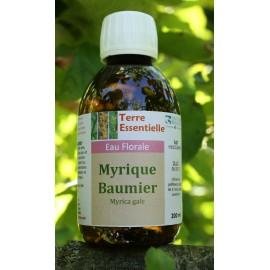 Hydrolat Myrique baumier
