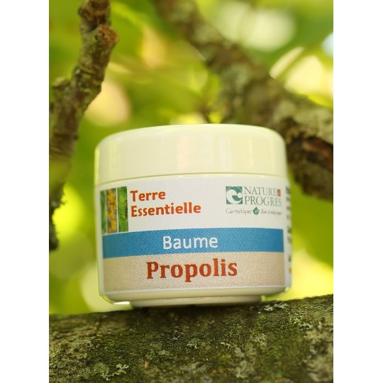 Baume Propolis