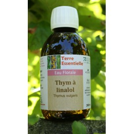 hydrolat Thym à linalol