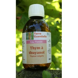 Hydrolat Thym à thuyanol