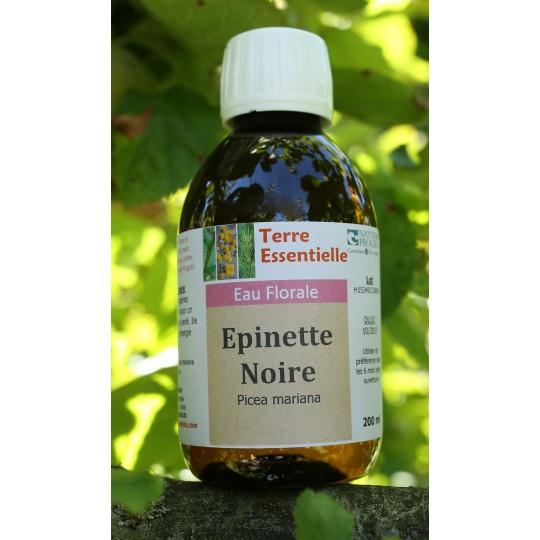 Hydrolat Epinette noire