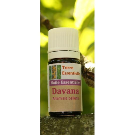 Huile essentielle Davana
