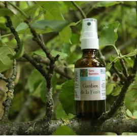 Spray d'huiles essentielles Gardien de la Forêt